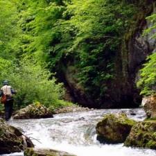 Reka Ljuboviđa - Planinska lepotica
