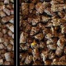 Ingrediant profiles V-deo