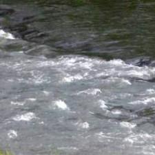 Divlja i divna banatska reka Karaš