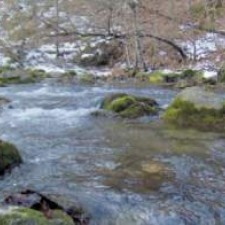 Rzav, zaboravljena reka mog detinjstva