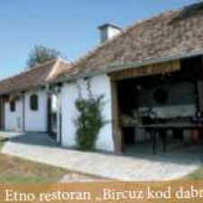 Specijalni rezervat prirode Zasavica