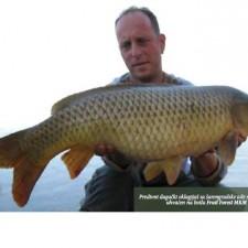 Lov šarana na Dunavu