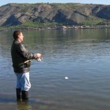 Ulov soma na Dunavu