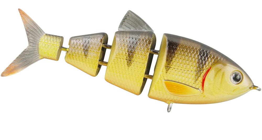 BBZ-1_2-5_yellow-perch.jpg